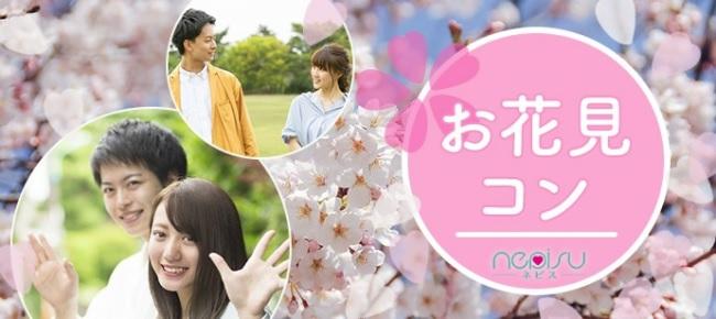 【京都 植物園】 20代中心!春のお花見ウォーキングコン!お一人様でも安心して参加可能!恋活/趣味コン